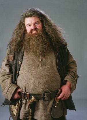 PromoHP3_Rubeus_Hagrid.jpg